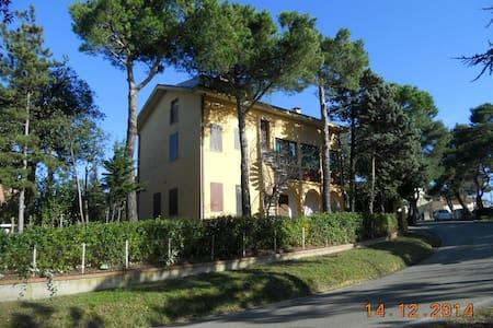 Grande casa con giardino  - Monteciccardo - House