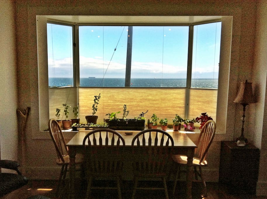 Dining Table - the blinds in the dining and living rooms can be closed from the bottom or top for added privacy
