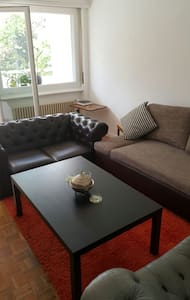 CERN beautiful one bedroom flat - Huoneisto