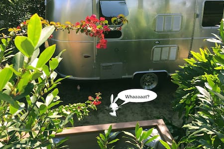 AIRSTREAM + SPA RETREAT minutes to VENICE BEACH ! - Los Angeles - Bed & Breakfast