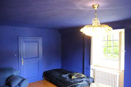 Blue Room with Piano - Huis