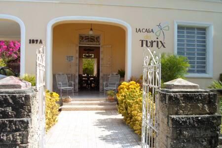 La Casa del Turix-- The Blue Room - Mérida