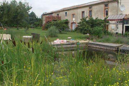 Les loriots gite rural in Aude - Apartment