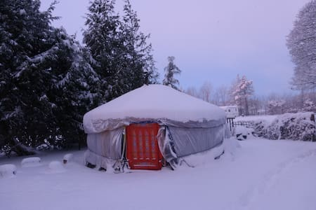 Mongolian Yurt with Heated bathroom - Yurt