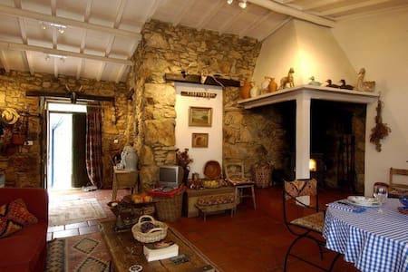 Casa da Lomba and annexes - Figueiro dos Vinhos - Casa