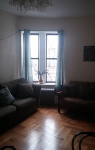 Sunny Sanctuary in Crown Heights - Brooklyn - Apartment