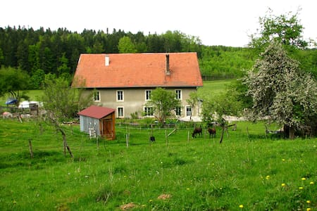 Bed and breakfast in Jura mountains - Apartamento