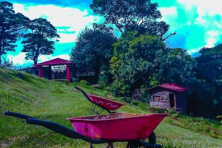 ACAMPAR,YOGA, PICNIC - San Isidro - Andere