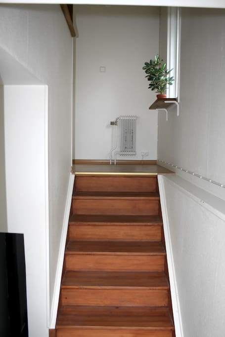 Entrance stair case