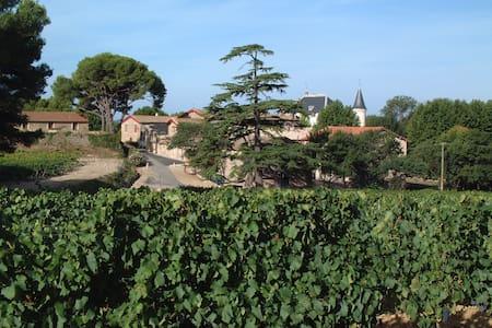 Gîte au coeur des vignes - Lägenhet