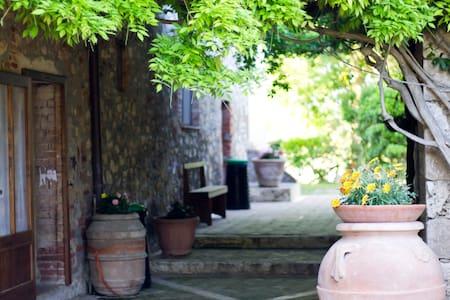 camera ortensia - Monte Antico