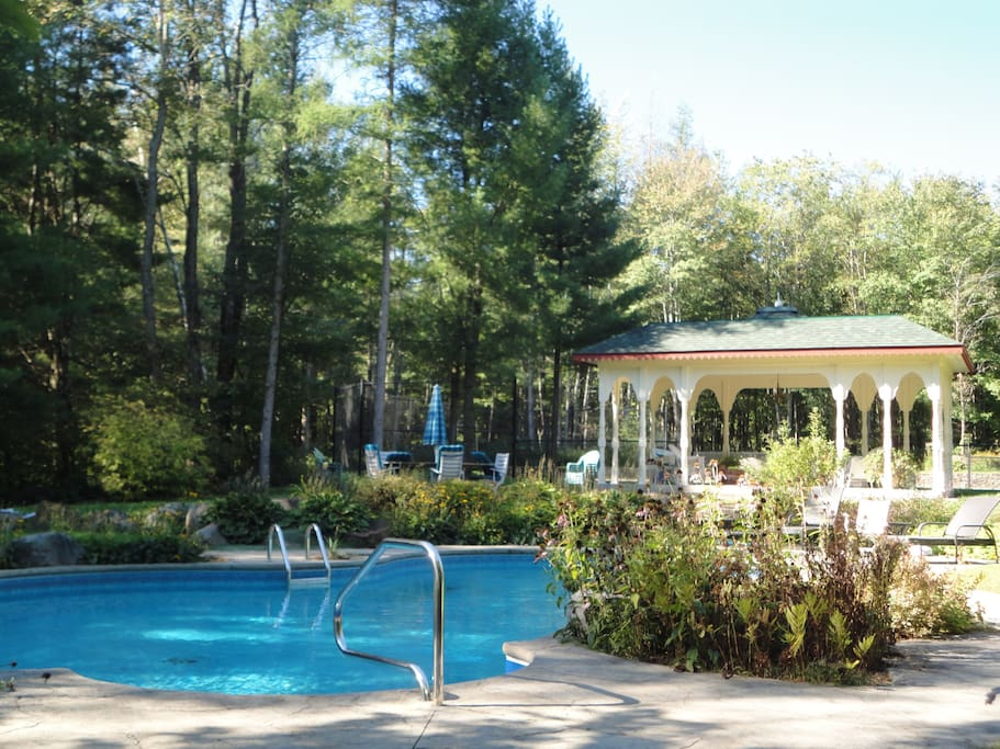 Pool in the forest. Heated. Salt water