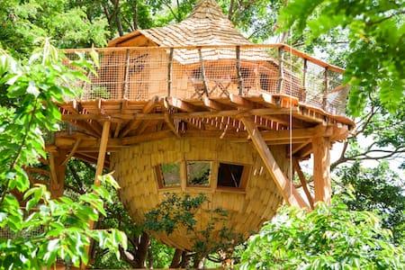 The Orchard Treehouse, Charm & Spa - Ağaç Ev