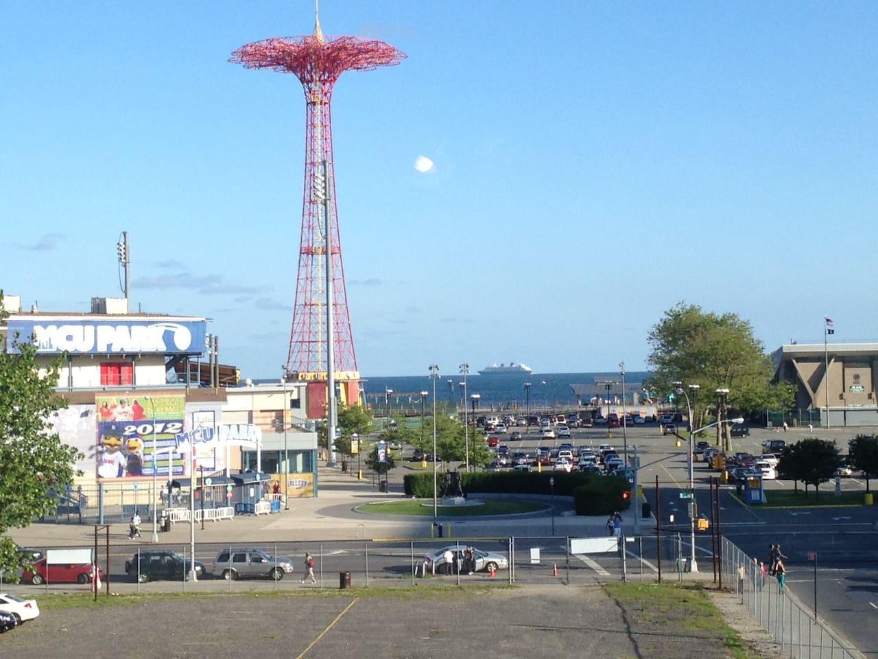 Coney island Entire Apt Safari Wi F