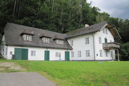 The Forester's House , a retreat - Weißenbach am Attersee