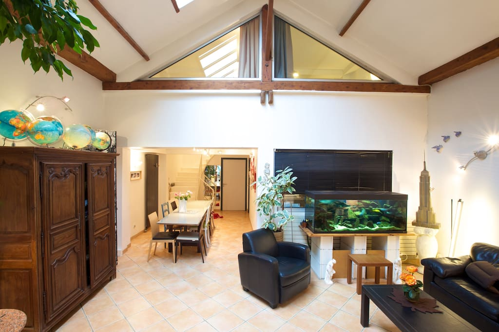 The very spacious living room