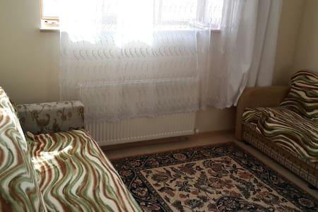 Private room & seramic art - Radhus