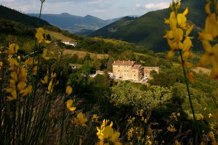 Splendida Villa che risale al 1550 - Pietralunga - Bed & Breakfast