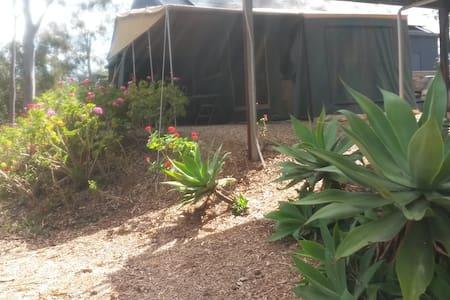 Camper Trailer Tent - Tent