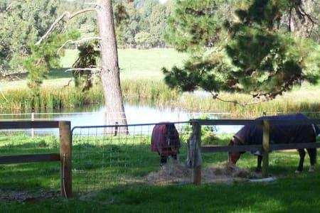 Peaceful bungalow - close  Red Hill - Merricks