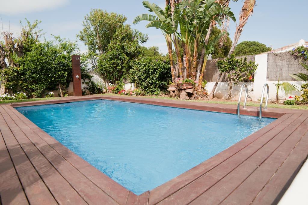 Swimmig pool aprox:7mx4m