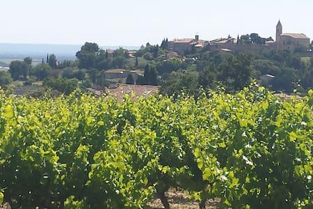Vieille ferme au milieu des vignes - House