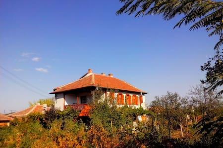 Guest house Sotirovi - Vila