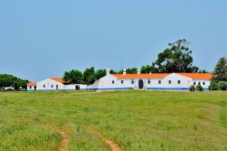 Herdade da Negrita-Casa do Arco - Herdade da Negrita