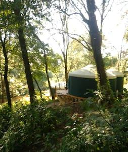 """Moon Lodge"" - Yurt"