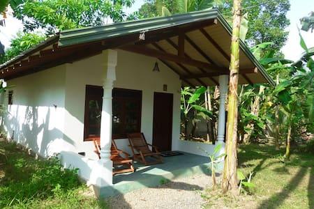 Time Lag Garden Cabana1 - Hütte