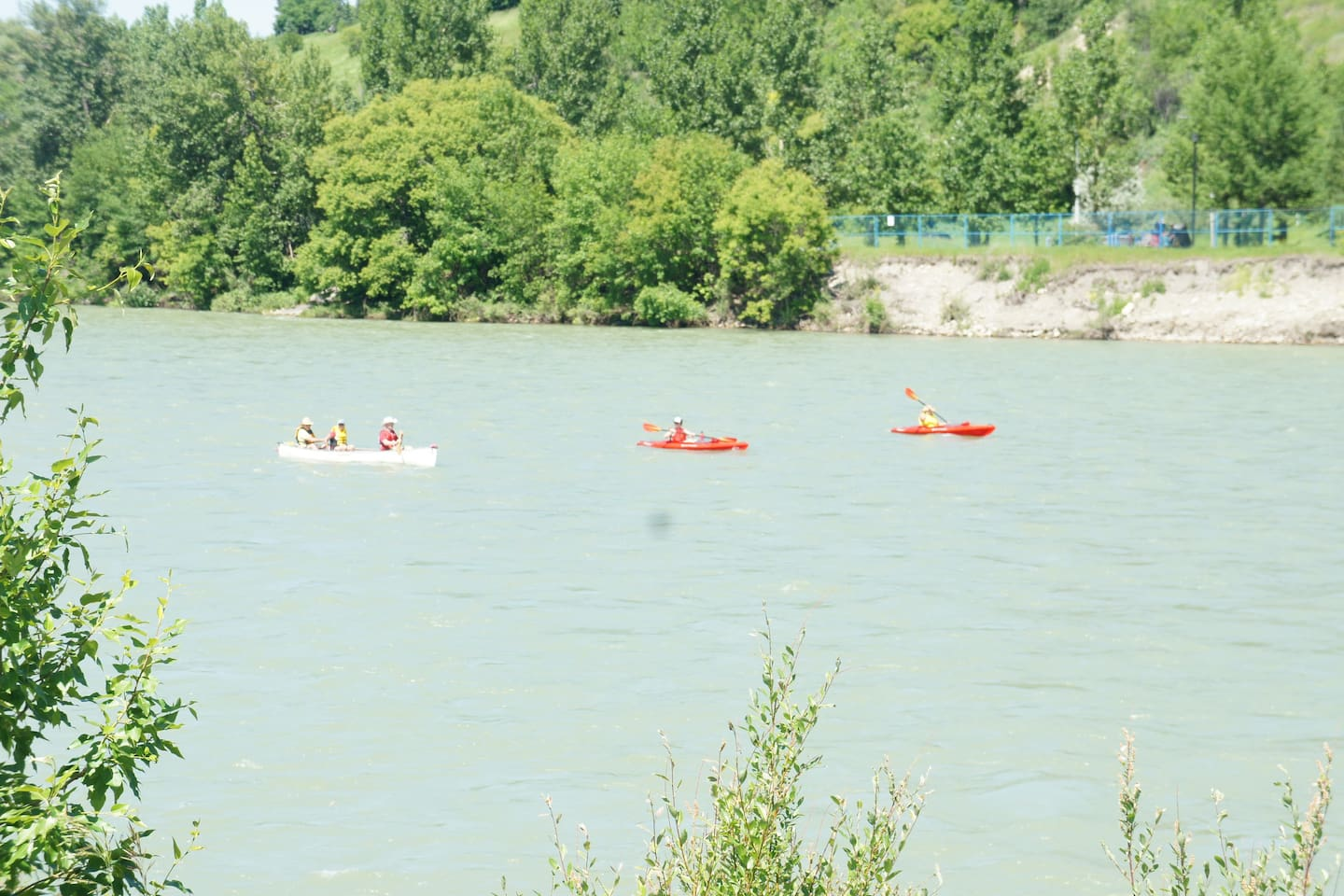 summer time, a lot of fun activities in the river