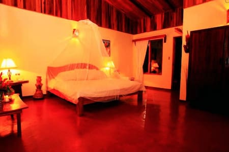 Magical Tropical Fantasy - Room 1 - La Fortuna - House