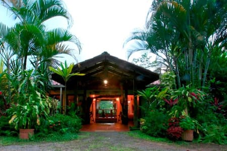 A unique jungle Eco Lodge and park on the edge of the rainforest. 8 miles of trails, waterfalls, swimming pool and an amazing variety of plants and fruit trees.