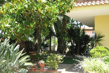 Vacanze vicino a Tropea Calabria - Appartamento
