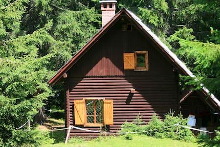 Remote Cabin in forest, above Bled - Goreljek - Bled,  - Chalet