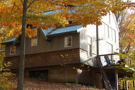 The Tree House  - Killingworth - House