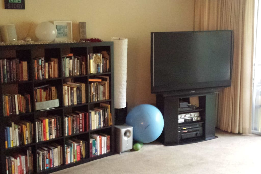 Big Screen TV, exercise equipment, and a robust library...