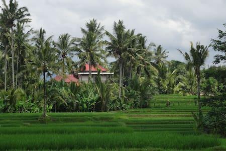 POOL VILLA, FAR FROM TOURIST CROWD - Tegalalang - Haus