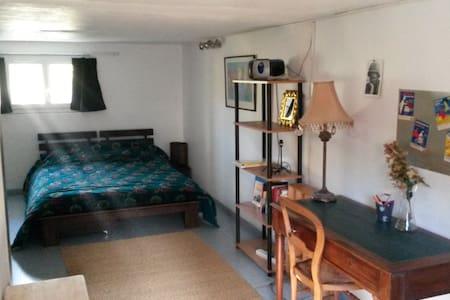Chambre spacieuse sur jardin - Saint-Cyr-sur-Loire