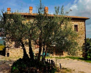 B&B La Casa di Teresa - Monte Castello di Vibio