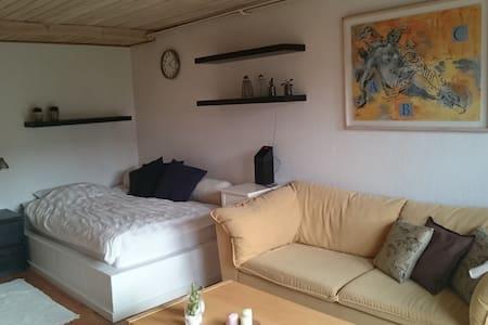 Big room - own terrass - Dom