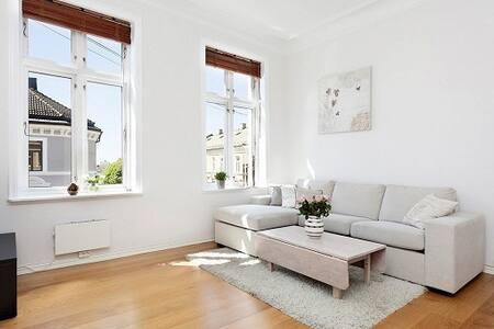 Apartment close to city centre ! - Oslo - Apartamento