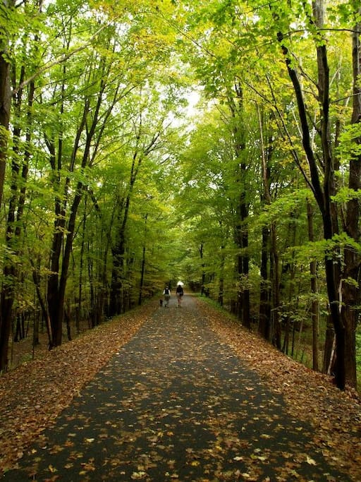 Explore the region rich with foliage and forests, and take a stroll or ride along the nearby bike path, connecting the entire Pioneer Valley with serene and luscious pathways.