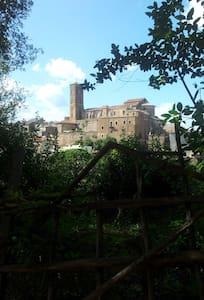 Luxury Apartment near Rome (Sutri)