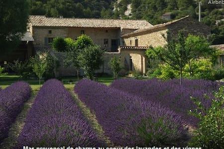 Een B&B tussen lavendel velden - Le Pègue - Bed & Breakfast