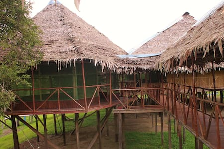 Tropical Adventures & expeditions - iquitos - Bungalow