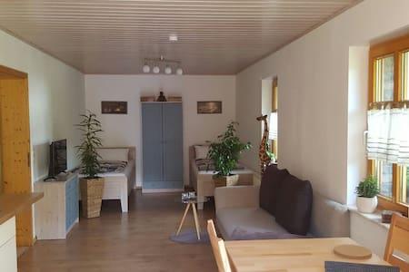 Gemütliche Ferienwohnung in Niederfischbach - Niederfischbach - Condominium