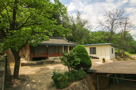 Springday guest house - Casa