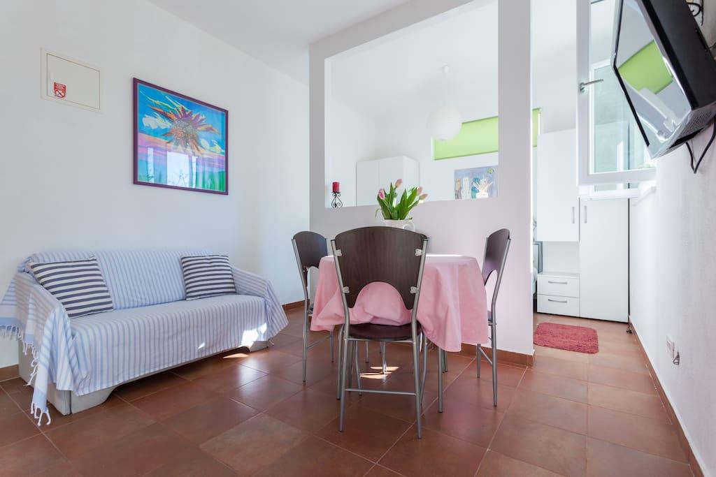 Studio Apartment Petre