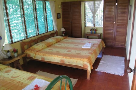 Nosara Retreat: Hummingbird - Nosara - Bed & Breakfast